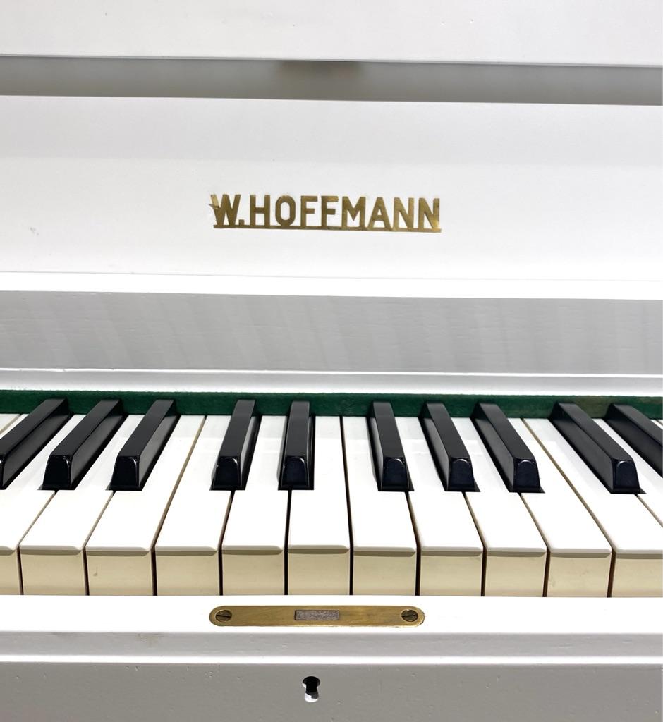 W. HOFFMANN 110